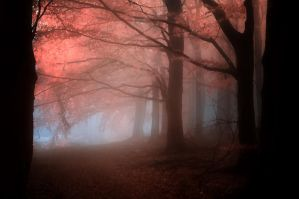 -Ancient melody of healing- by Janek-Sedlar