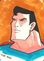 Superman by sirandal