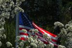 Memorial Day II by grbenninger