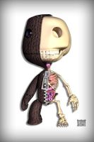 Sackboy Anatomy iPhone by freeny