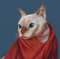 Yasmin the fashionable cat by DemenTIC
