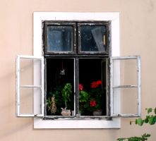 just a window... by burcyna