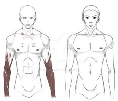 P! Upper male body by skuad