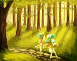 .: Strolling through a sunlit forest :. by Samooraii
