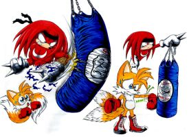 Tails learning to box by Dash-Metal-Cheetah