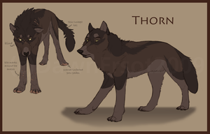 Thorn Ref by DawnFrost