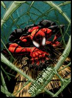 Superior Spider-man by Ryan Stegman - Colors by Staminaboy