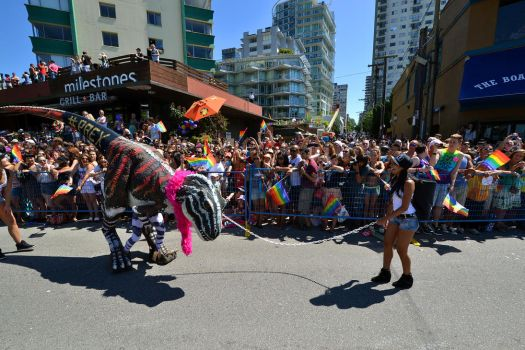 Vancouver Pride Parade 2014 - Stopped by Hxes