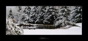 The Fall of Winter by imaginee