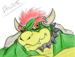 30 min bowser by Shimmergloom