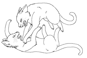 Fighting Cats Lineart by Time-of-Dispair