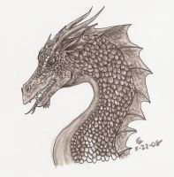 Dragon Head Study by SarurunKamui