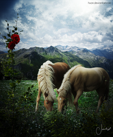 Love of horses / Amor de caballos by Hvan