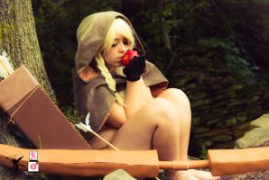 Dragon's Crown Elf Photoset Teaser 7 by Feywilde