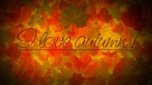 i love autumn by Anjunabeats9
