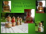 Harry Potter Potion Charms by geekySquirrel