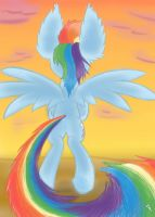 Go West, young Dashie by Heir-of-Rick