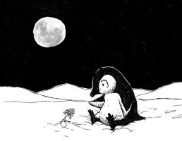 Lonely penguin no.3 by Hoed