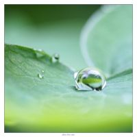 after the rain by macmartin