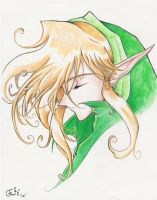 Link by Edheloth