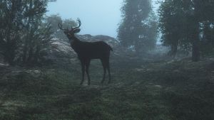 Buck3 by fractal2cry