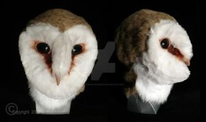 Barn Owl Mask by CaseyAlexandra