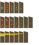 Rank Insignia of the Tibetan Communist Army by kyuzoaoi