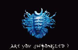 Are You Shpongled? by xionacz