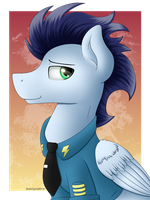 Commander Soarin by Spirit-Dude