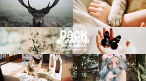 Pack Of Covers For Facebook by Luunatico