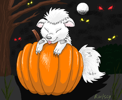 Pumpkin by racingwolf