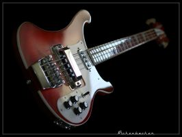Rickenbacker Bass 2 by cycoze