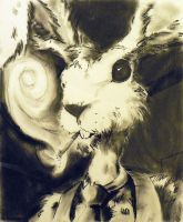 Alice_1 - hare by bockus