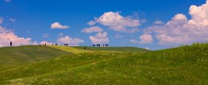 terre di toscana 0118 by bagnino