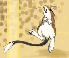 Kangaroo Rat by DragonessBahamut