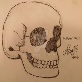 Skull Study by GalliArts