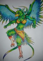 Avian Anthro Concept by HurricaneW0lf