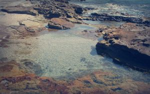 Rock Pool by SxyfrG