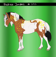 Padro Import #102 - Common by Horse-Emotion