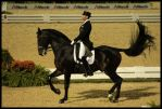 WEG 2010-Freestyle Dressage 2 by Phantom303