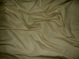 Beige Fabric by Cynthetic