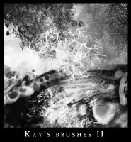 Kay's Brushes II by KaynessArt