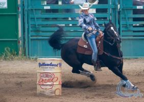 Rodeo 2015-2 by Lonewolf-Eyes