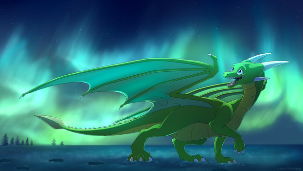 The Northern Lights - commission by IcelectricSpyro