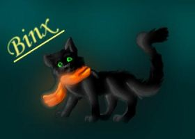 Binxy for WhiteWolf :D by SilentWolf-SV