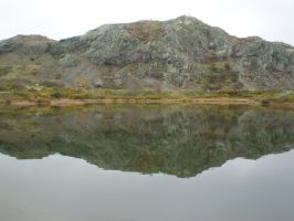 Signal Hill rock reflection by Lady-Lilith0666