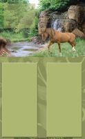 Tequila Layout by MeganHorses22