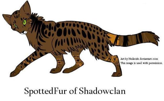 Spottedfur of Shadowclan by Seri-goyle