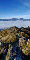 Fog Panoramic 2 by mark-flammable