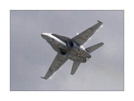 High Speed Hornet by OpticaLLightspeed